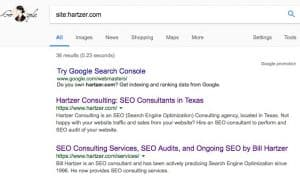 hartzer.com pages indexed