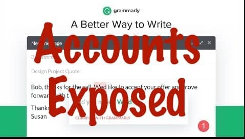 install grammarly for chrome