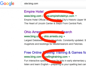 Bing redirects indexed in Google