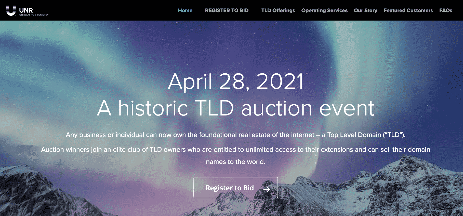 Top Level Domain TLD Auction